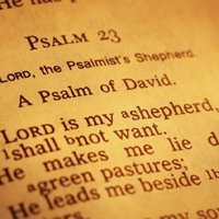 The Psalms: Model and Guide to Prayer-0